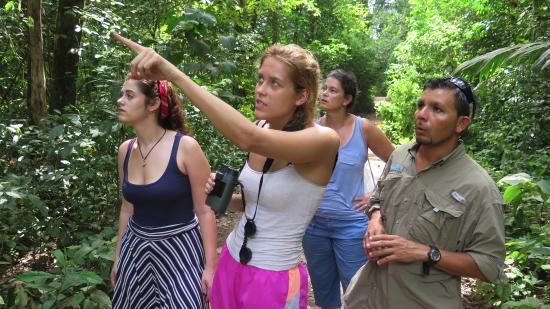 Xplora Panama Day Tours: Touring the jungle/rain forest via the Pipeline Road.