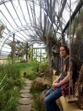 Sol y Luna Bed & Breakfast: The botanical garden that Cisco runs