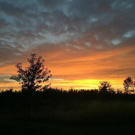 Halesworth, UK: Amazing sunsets