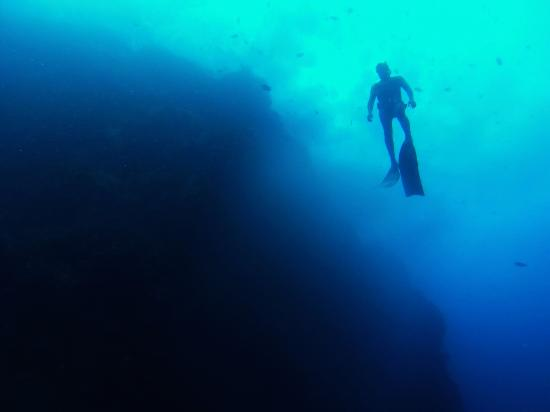 Windwardside, Saba: Freediving Courses