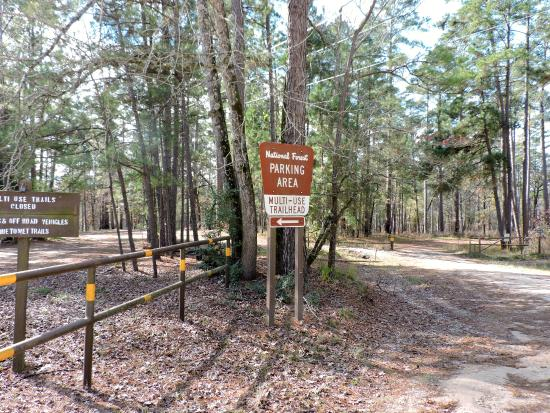 sign for the trails picture of sam houston national forest new rh tripadvisor com