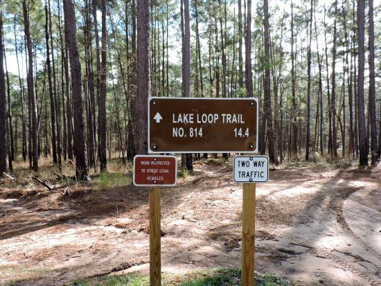 another trail sign for atv trail picture of sam houston national rh tripadvisor com