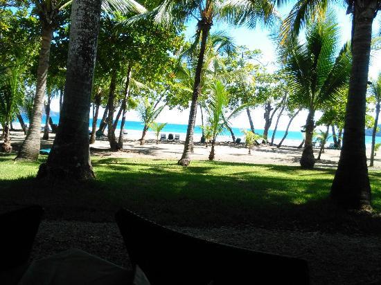 Tambor, Costa Rica: IMG_20160113_122203_large.jpg
