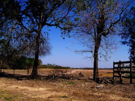 Province of Chaco, Argentina: el chaco mi patri