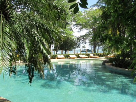 Hotel Capitan Suizo: Pool surrounded by tropical garden