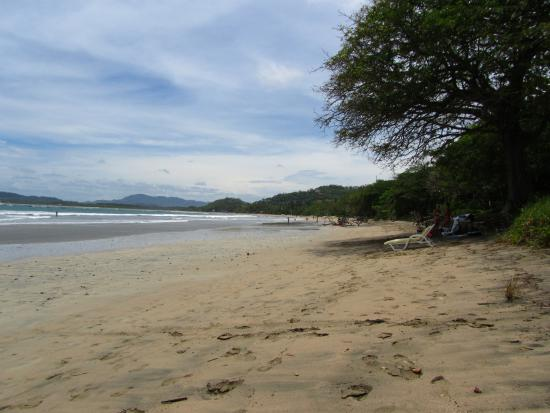 Hotel Capitan Suizo: Playa Tamarindo