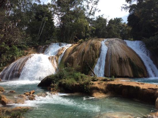 Hermosolugar picture of cascadas de agua azul palenque for Cascadas de agua