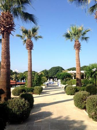 Avanti Hotel: photo0.jpg
