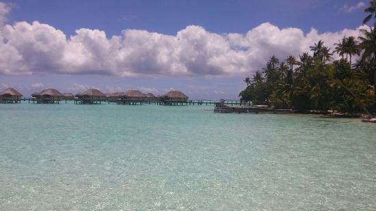 Le Taha'a Island Resort & Spa: Vacaciones en polinesia.... Tahha island