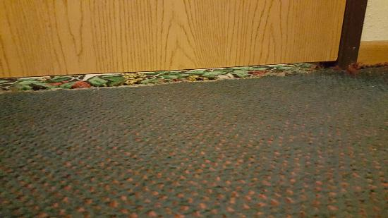 Super 8 Pinetop: Rooms have a large gap ... keep it down if you plan on making some noise, if you catch my drift.