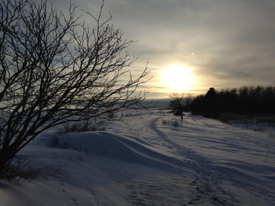 Hecla Island, Canadá: Winter afternoon