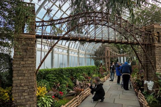 Pared de orqu dias picture of new york botanical garden Bronx botanical garden free admission