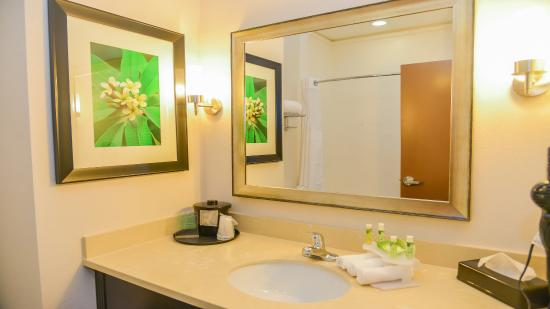 Guest Bathroom at Holiday Inn Express & Suites Cuero Texas