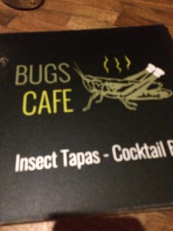 Bugs Cafe Photo