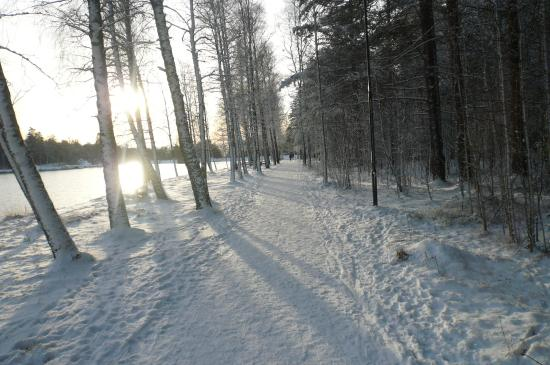 Fredrikstad kommune, Norge: Nydelig skogsløyper