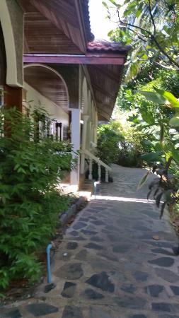 Tropica Resort and Restaurant: 20160102_113542_large.jpg