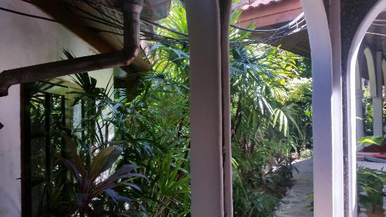 Tropica Resort and Restaurant: 20160102_113608_large.jpg