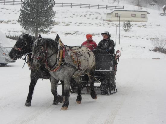 Waldrasthof: Sleigh ride nearby
