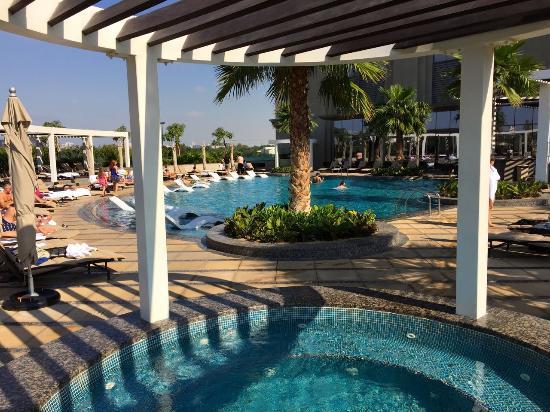 Jacuzzi And Pool Bild Von Hyatt Regency Dubai Creek Heights