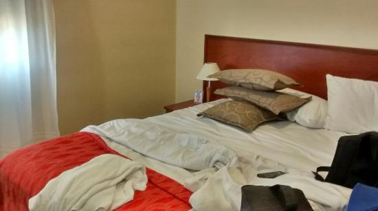 Hotel Andes