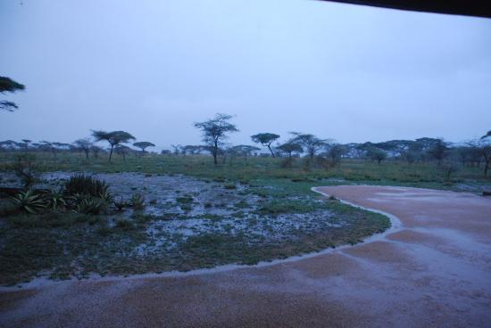 Ndutu Safari Lodge: Hotelvorgelände ohne Zaun