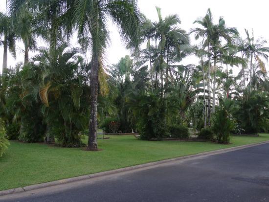 Cairns Coconut Holiday Resort: Campingplätze