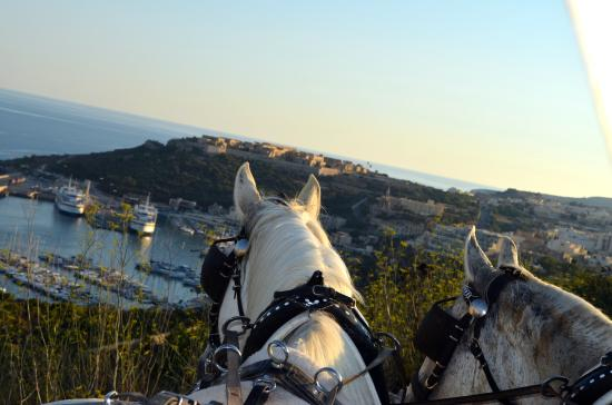 Xaghra, Malta: Carriage Tours