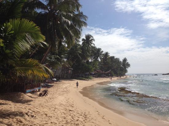 Sri Gemunu Beach Resort: View from Sri gemunu