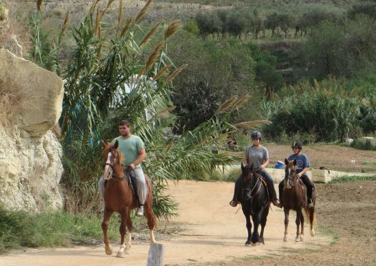 Victor's Horse & Carriage: Horse riding