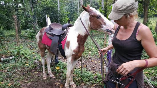 Punta Uva, คอสตาริกา: Caribe Horse Riding Club Day Tours