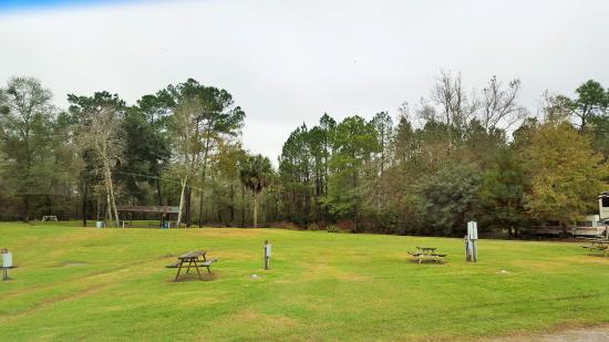 Golden Isles RV Park: View on the best part of the campground.