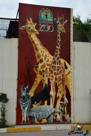 Darıca Faruk Yalçın Hayvanat Bahçesi ve Botanik Parkı ...
