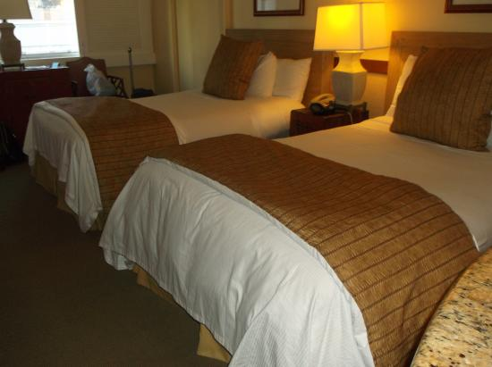 The Equus Hotel: beds