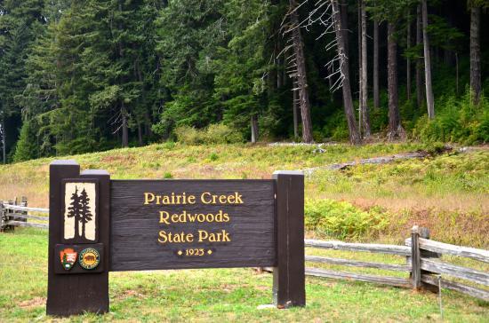 Orick, CA: Prairied Creek Redwoods State Park