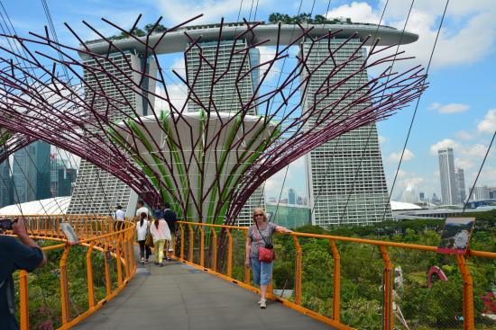 Sky Garden Walk: Picture Of Gardens By The Bay, Singapore