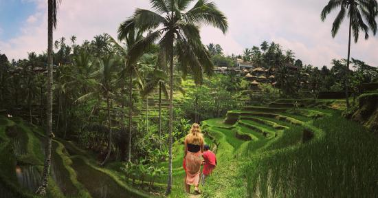 Your Bali Excursion