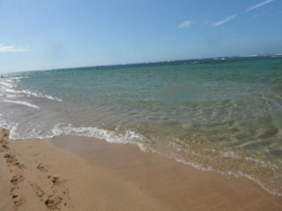 Kealia, HI: Kauai beaches