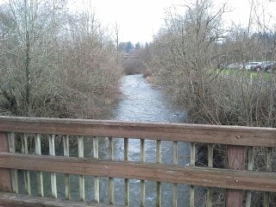 Salmon Creek Park: Creek view 1 from bridge
