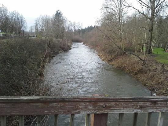 Vancouver, Waszyngton: Creek view 2 from bridge