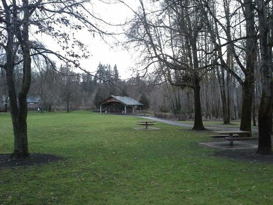 Salmon Creek Park: View of shelter in background