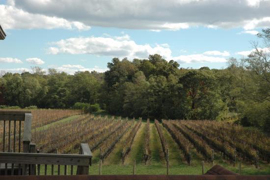 Mattituck, Nova York: 1 of the 2 gorgeous vineyards