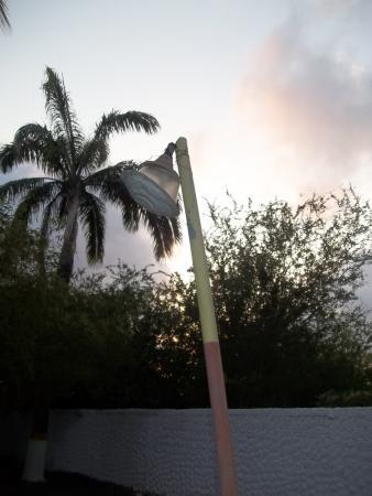 Hotel Manaure: luces area de la piscina