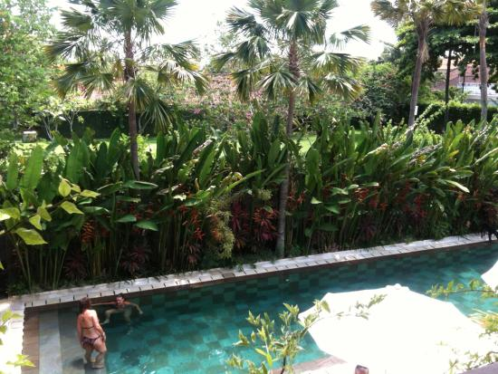great pool picture of the open house jimbaran tripadvisor rh tripadvisor com