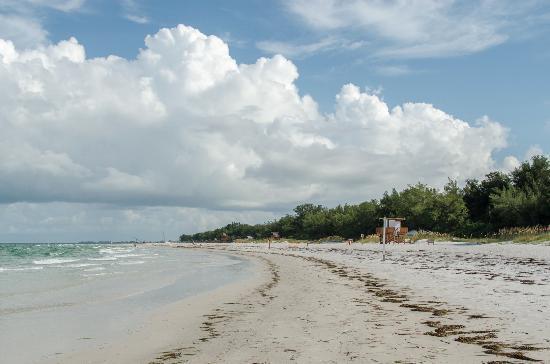Longboat Key, FL: Early morning at Coquina Beach.