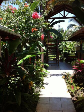 Hotel Pura Vida: Entrance/communal area