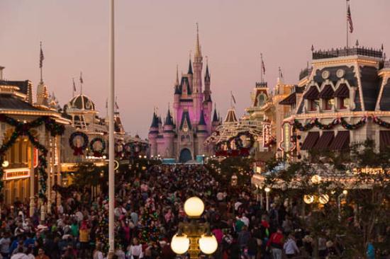 Le château - Picture of Walt Disney World, Florida - Tripadvisor