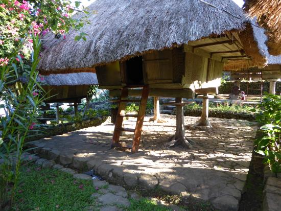 Native Village Inn & Restaurant: Traditional Ifugao hut