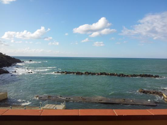 The Best Livorno Pet Friendly Beach Hotels Of 2019 With