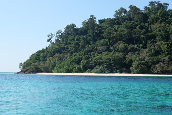 Paradise view - Picture of Koh Rok Island, Ko Lanta - TripAdvisor