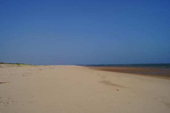 Kizingo: Beach